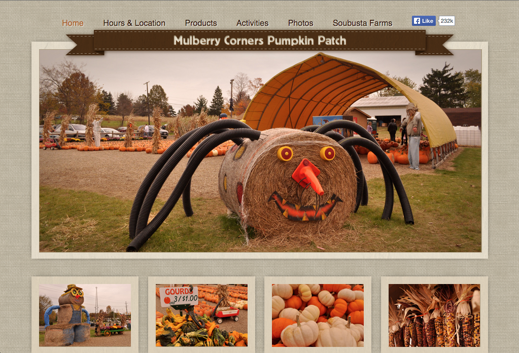 Mulberry Corners Pumpkins Website Preview Image 1